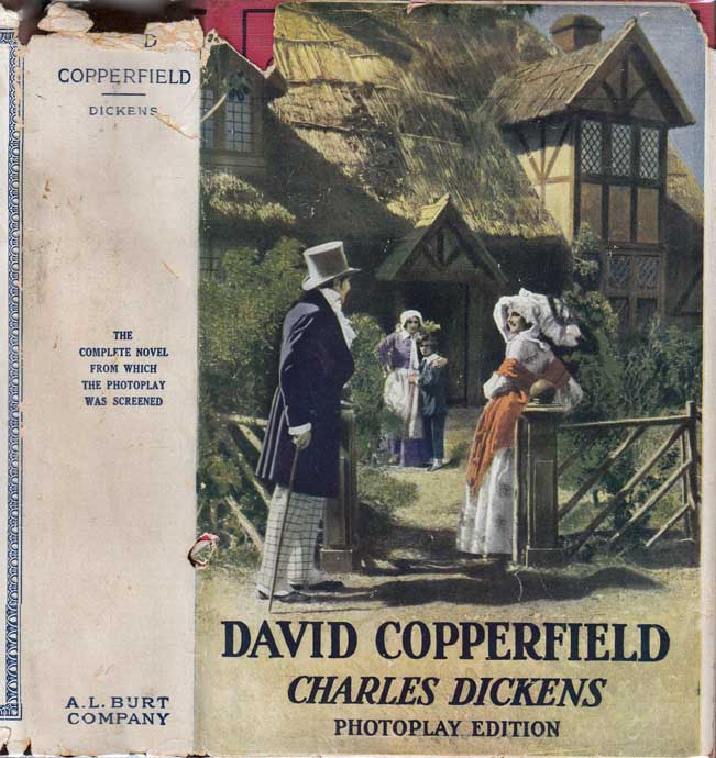 an overview of the novel david copperfield by charles dickens Dickens later included a thinly disguised account of this experience in his autobiographical novel, david copperfield i explore the ideas about childhood trauma, and the way that it may be forgiven, that emerge in the novel and argue that the writing of the novel facilitated a process of partial forgiveness for dickens, which .