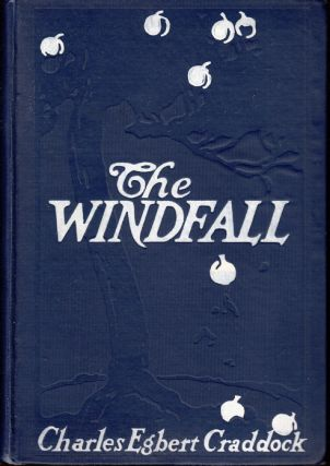 The Windfall [APPALACHIAN FICTION]